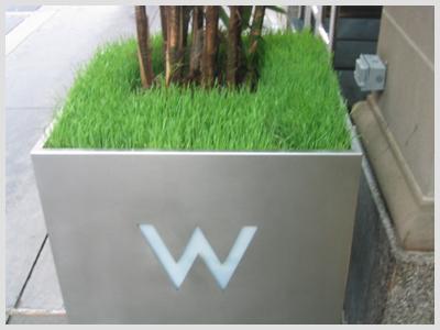 W_wheat_grass